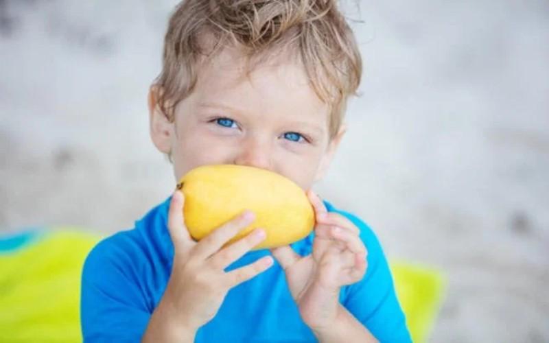 9 أطعمة سحرية تساعد ابنك على التركيز فى الدراسة .التنويرeltanwer