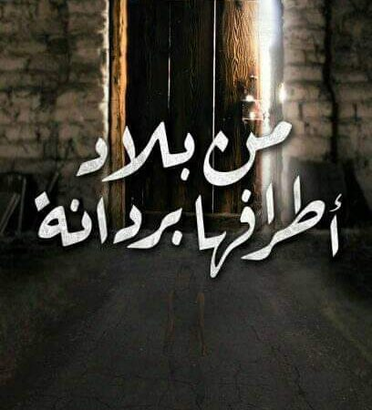 """""""آخر محاولات الالتئام """"قصيدة ل صفاء أبو صبيحة"""